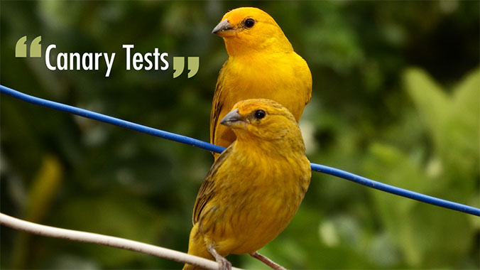 """Canary Tests"""